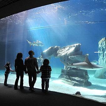 la biosfera: biglietti, orari e informazioni | acquario di genova - Acquario Di Genova Orari Biglietteria