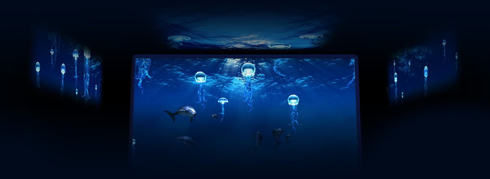 Scopri l 39 acquario di genova e acquista il biglietto for Blu di metilene acquario